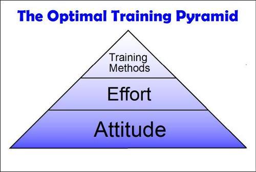 Optimal_training_pyramid