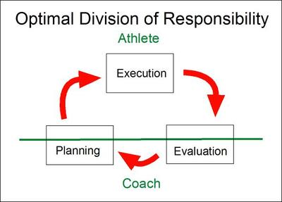 Responsibility_optimal